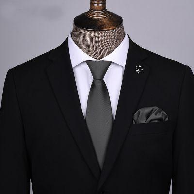 Cravate à clip matte business pour homme