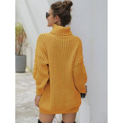 Pullover Knitwear pull pour femme avec col roulé